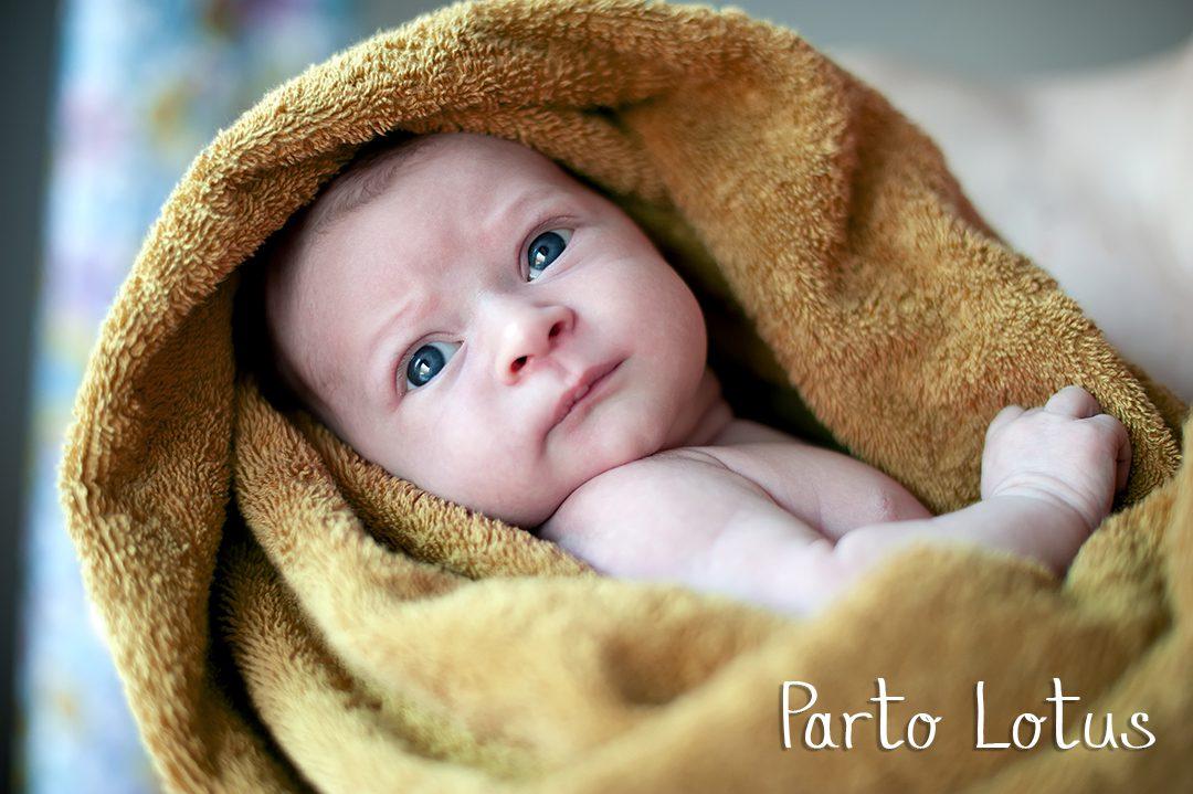 baby girl is hiding under the green blanket